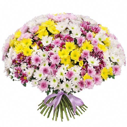Букет из хризантем кустовых