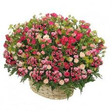 Кустовые розовые розы в корзине