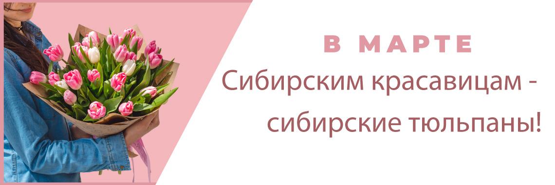Сибирским красавицам – сибирские тюльпаны